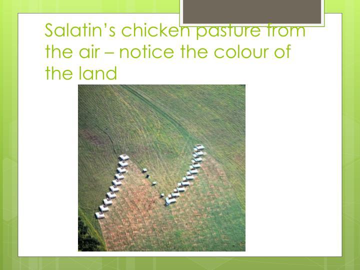Salatin's