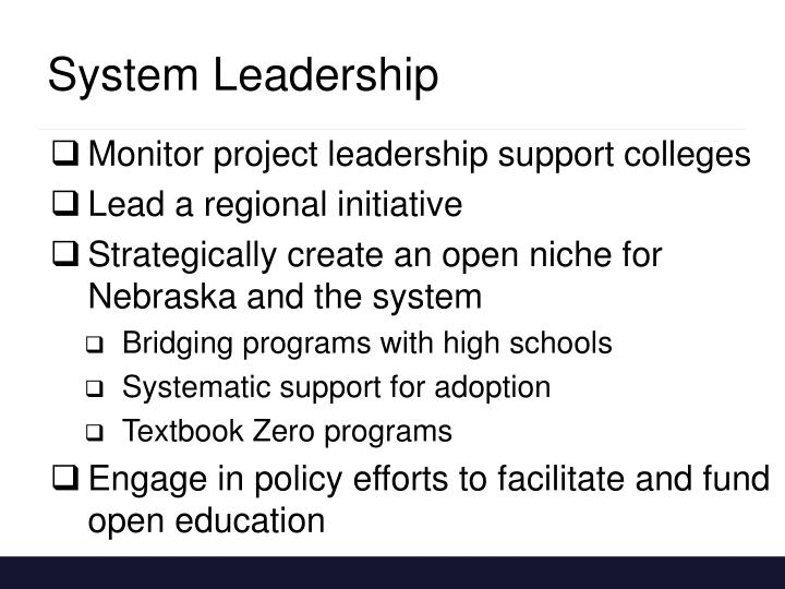 System Leadership