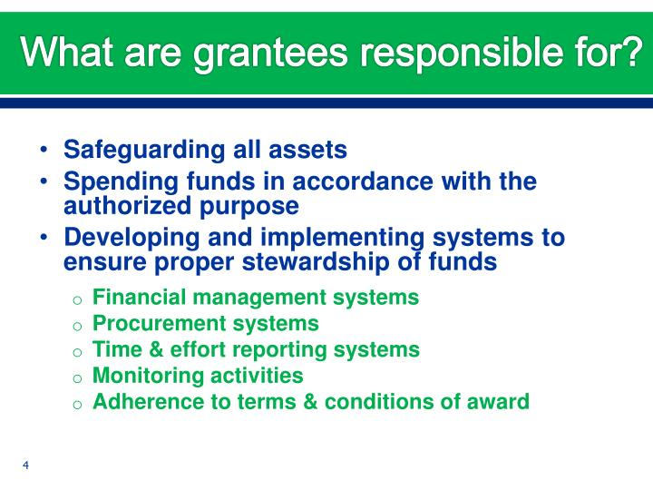 What are grantees responsible for?
