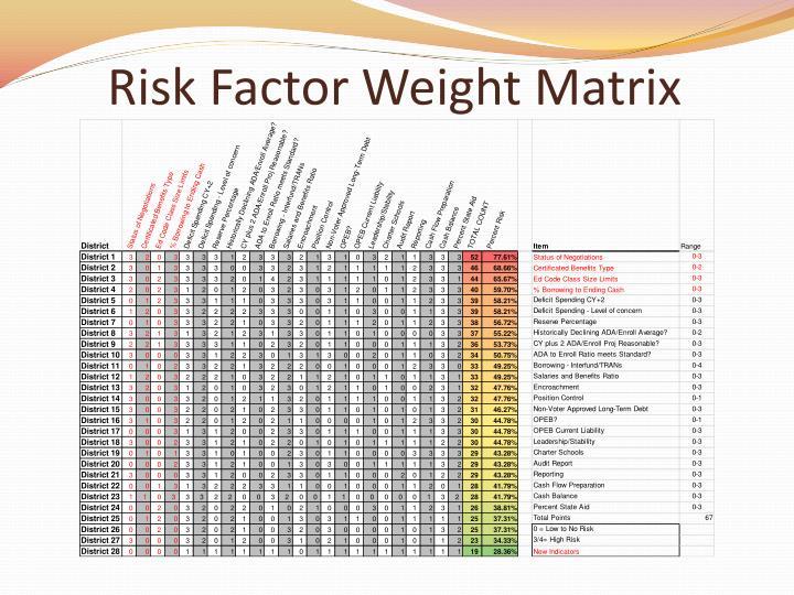 Risk Factor Weight Matrix