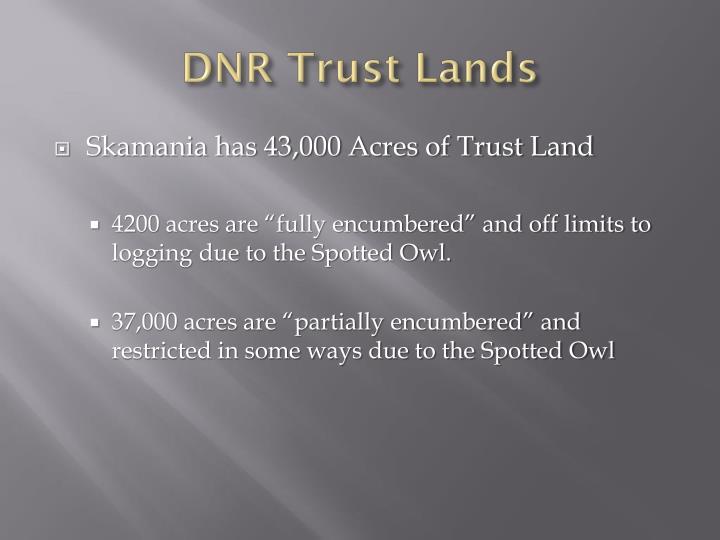 DNR Trust Lands