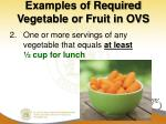 examples of required vegetable or fruit in ovs