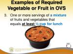 examples of required vegetable or fruit in ovs1