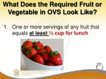 what does the required fruit or vegetable in ovs look like