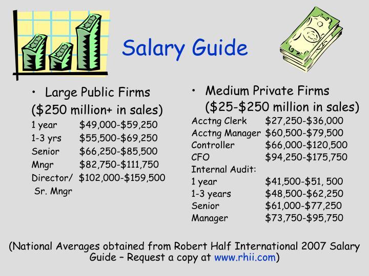 Large Public Firms
