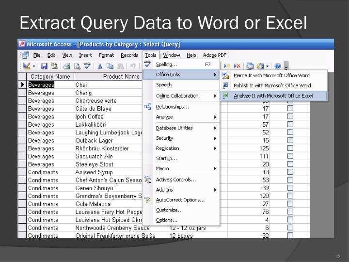 Extract Query Data to Word or Excel