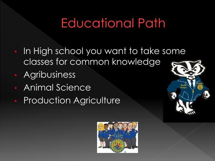 Educational Path
