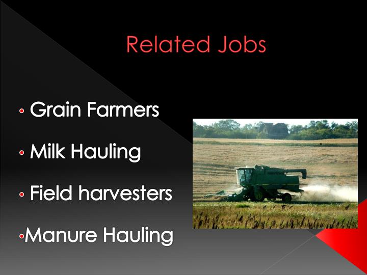 Related Jobs