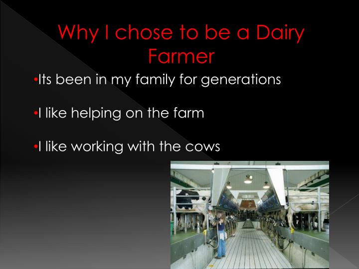 Why I chose to be a Dairy Farmer