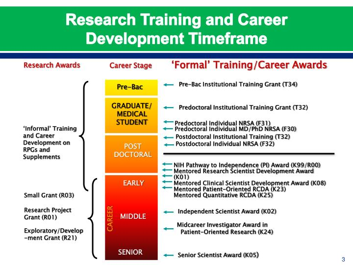 Research training and career development timeframe