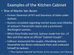 examples of the kitchen cabinet