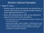 kitchen cabinet examples