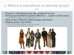 3 what is a subordinate or minority group
