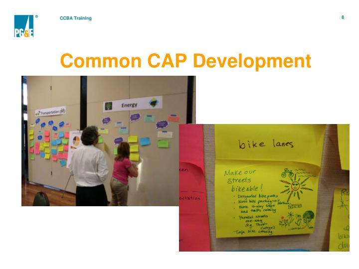 Common CAP Development