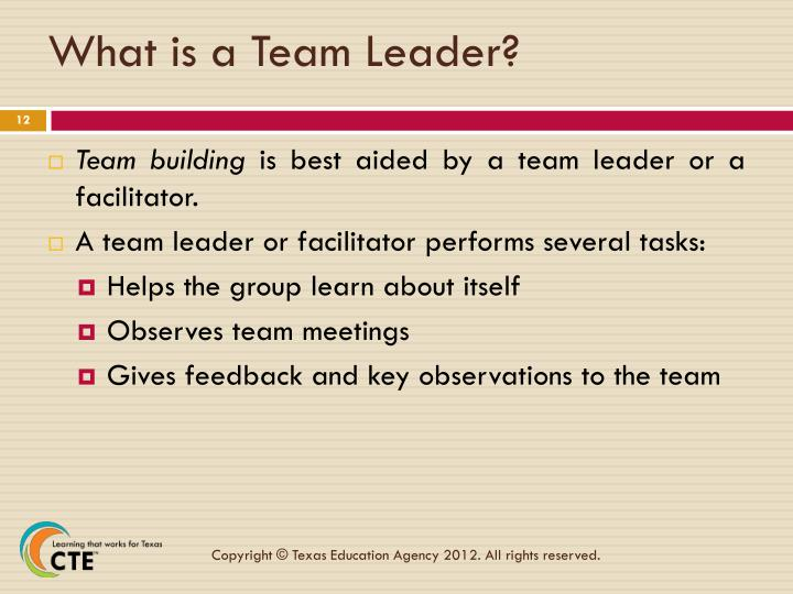 What is a Team Leader?