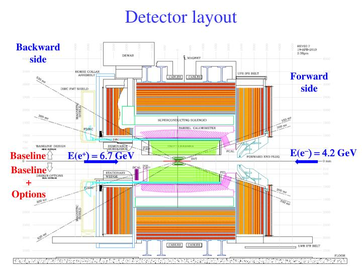 Detector layout