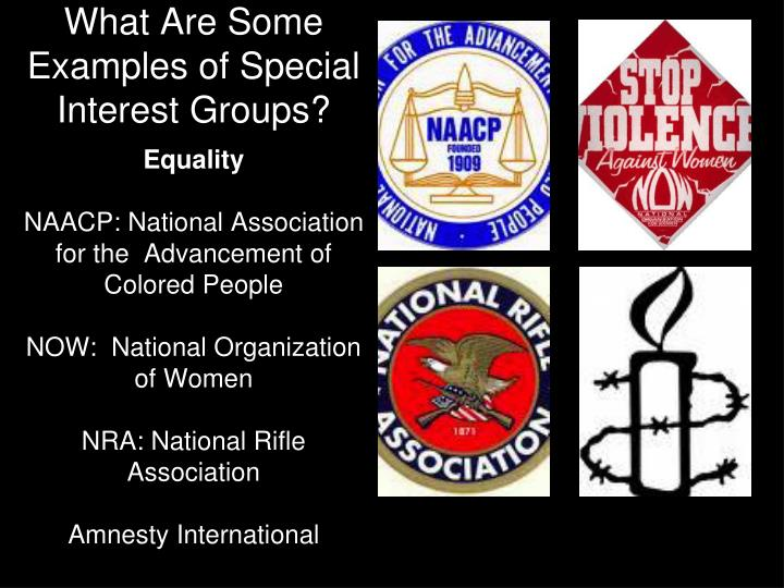 What Are Some Examples of Special Interest Groups?
