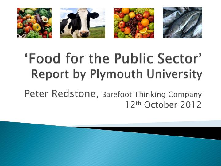 Food for the public sector report by plymouth university