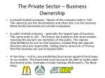 the private sector business ownership1