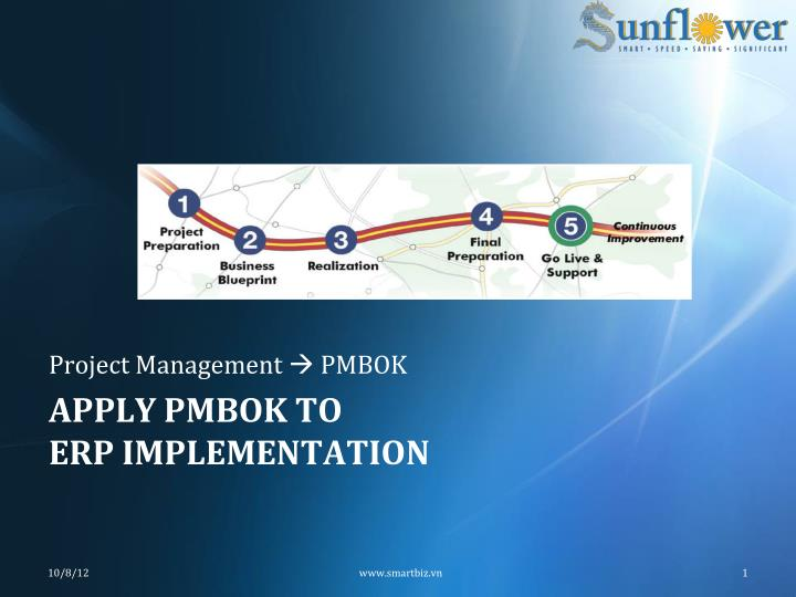 Ppt Apply Pmbok To Erp Implementation Powerpoint Presentation Free Download Id 1645249