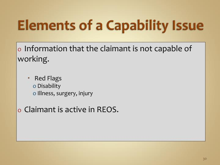 Elements of a Capability Issue