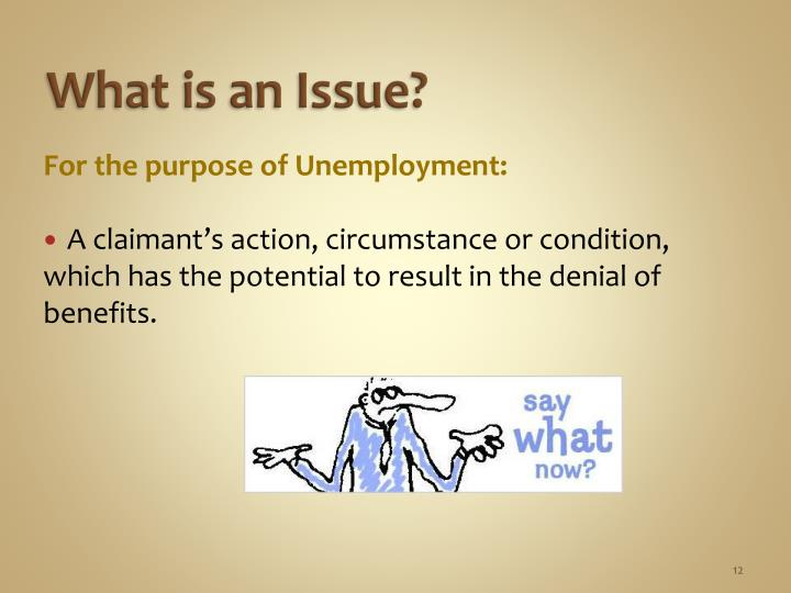 What is an Issue?