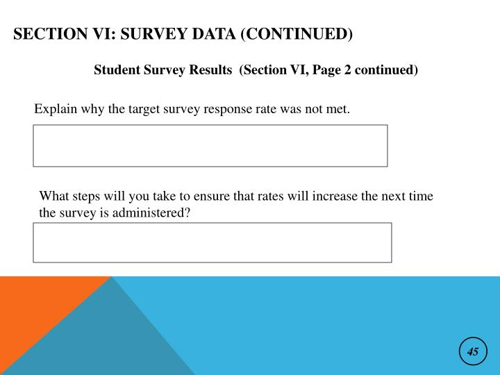Section VI: Survey Data (continued)