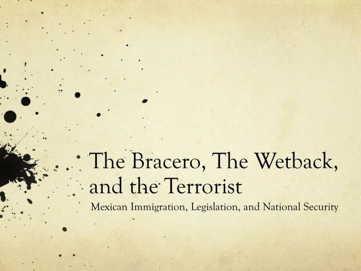 the bracero the wetback and the terrorist n.