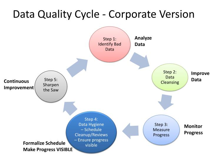 Data Quality Cycle - Corporate Version