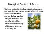 biological control of pests7
