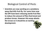 biological control of pests8