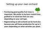 setting up your own orchard2