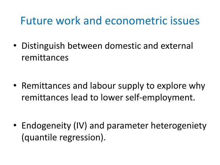 Future work and econometric issues
