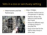 vets in a zoo or sanctuary setting
