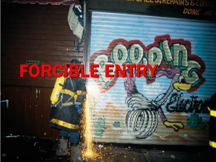 forcible entry n.