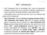 net introducere2