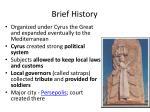 brief history1
