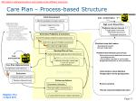 care plan process based structure1
