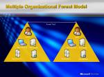 multiple organizational forest model