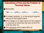 calculating a price and the problem of terminal values