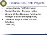 example non profit projects