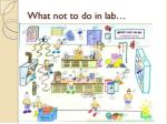 what not to do in lab