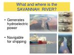 what and where is the savannah river1