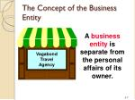 the concept of the business entity