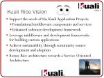 kuali rice vision