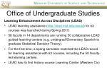 office of undergraduate studies1