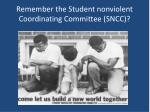remember the student nonviolent coordinating committee sncc