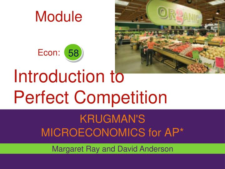 introduction to perfect competition n.