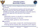 emerging leaders mentorship program