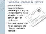 business licenses permits